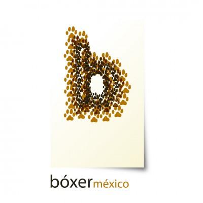 Bóxer México - Revista Especializada