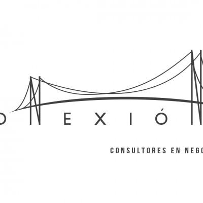 CONEXIÓN - Consultores en Negocios